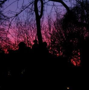 Zachód słońca na Plantach